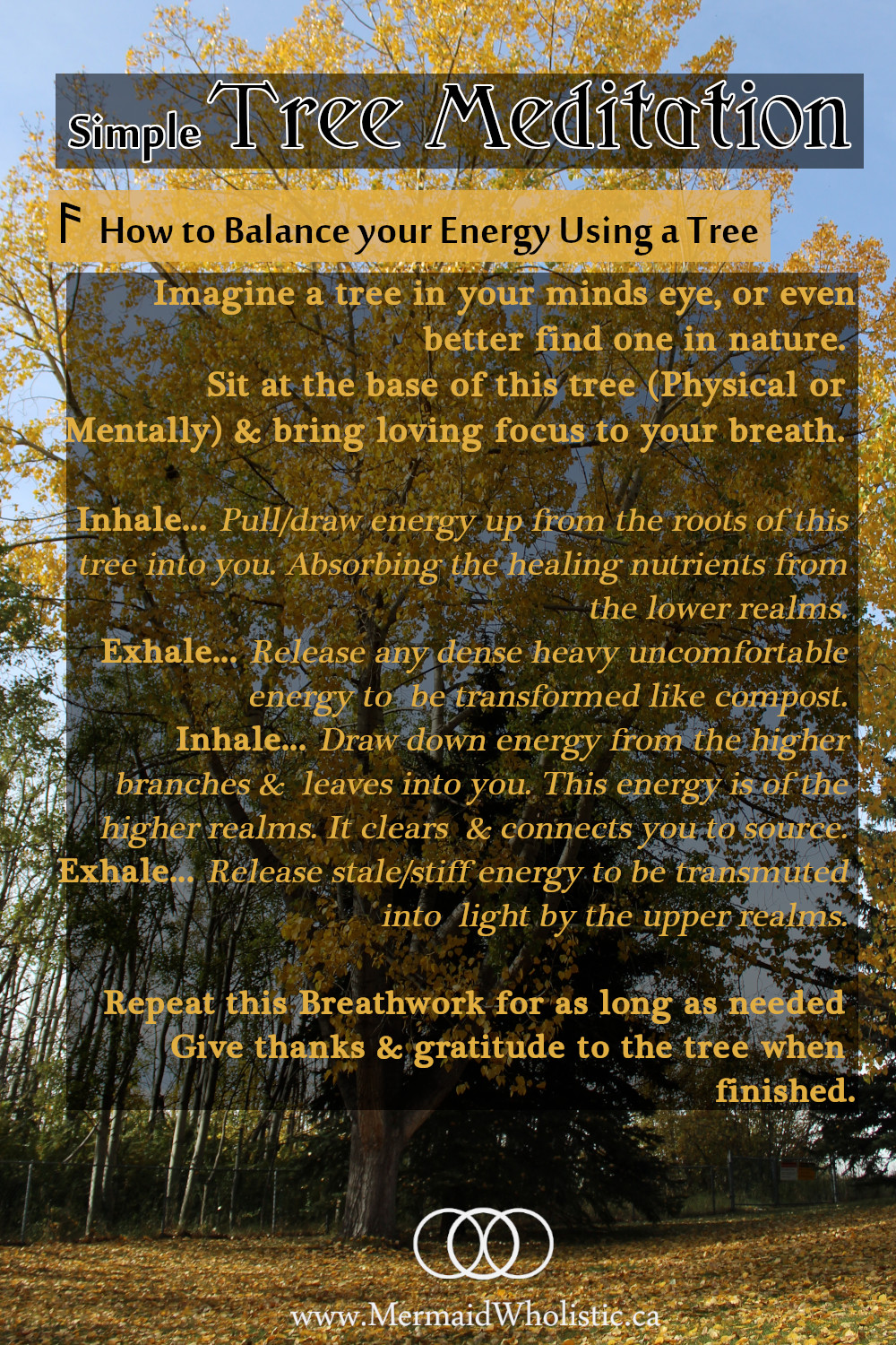 Shamanic Tree Meditation. Reduce the stress of the day!